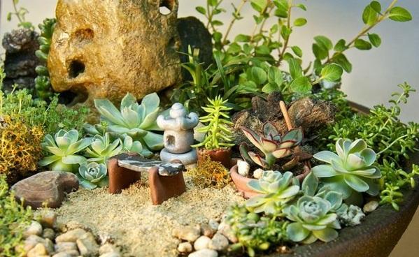 So Können Sie Einen Mini Zen Garten Kreieren Mini Garten Aus Sukkulenten Selber Machen