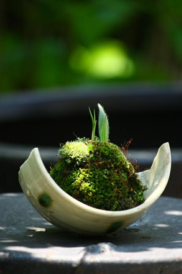 mini zen garten anlegen keramisch tassen moos