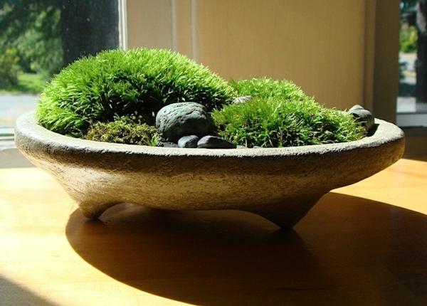 Image Result For Mini Zen Garten Selber Machen Anleitung