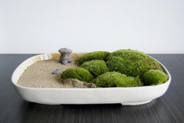 zen garten miniatur. Black Bedroom Furniture Sets. Home Design Ideas