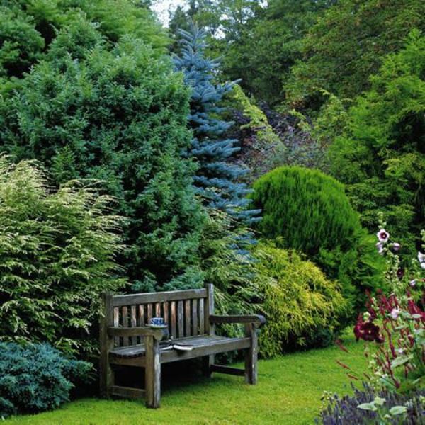 natur garten gestalten ideen Immergrüne Gartenpflanzen