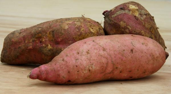 süßkartoffel roh wurzeln rosa