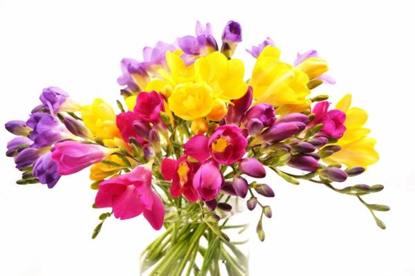 symbolik blumen fresie vase glas