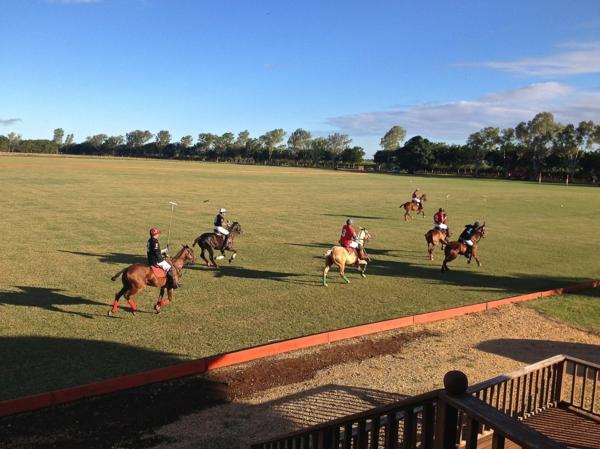 traumurlaub karibik polo spielen casa de campo