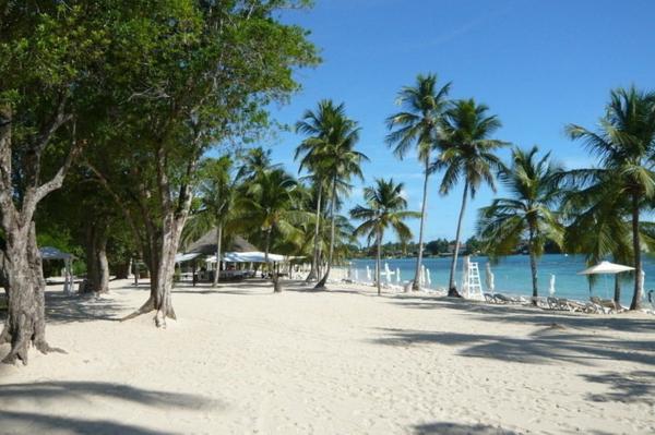 traumurlaub karibik weißer strand palmen