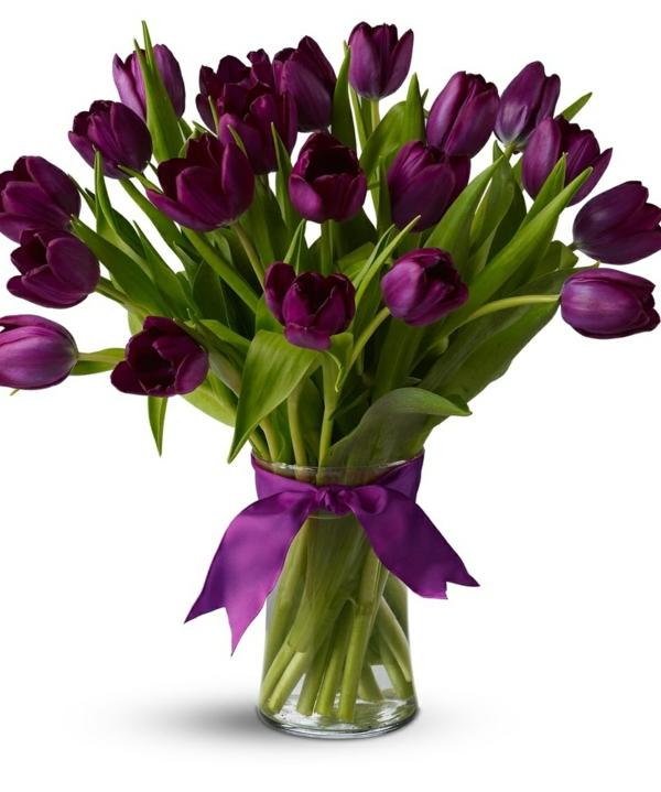 tulpen dunkellila gläserne vase schöne dekoideen