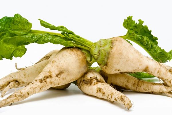 vitamintabelle zuckerrüben knackig frisch