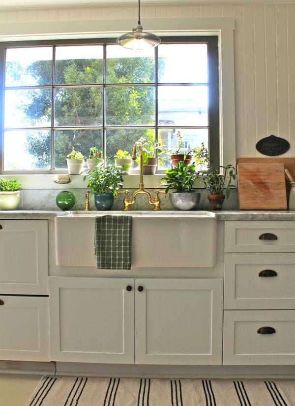 zimmerpflanzen bestimmen küche dekorieren teppichläufer streifen