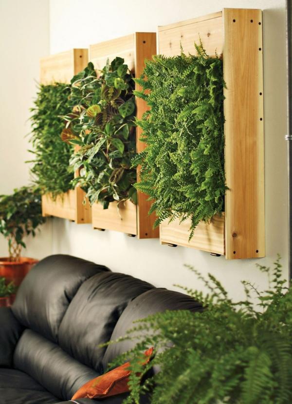 passende zimmerpflanzen bestimmen und pflegen frisch mobel. Black Bedroom Furniture Sets. Home Design Ideas