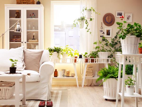 zimmerpflanzen bestimmen wohnzimmer dekorieren weißes sofa
