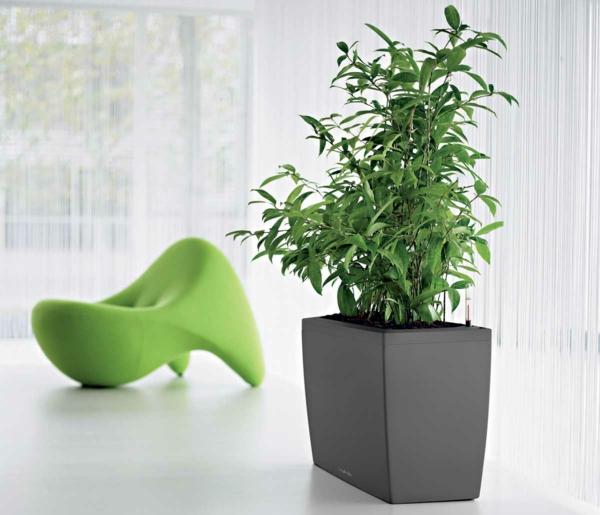 zimmerpflanzen grüner sessel schöne wohnideen gardinen