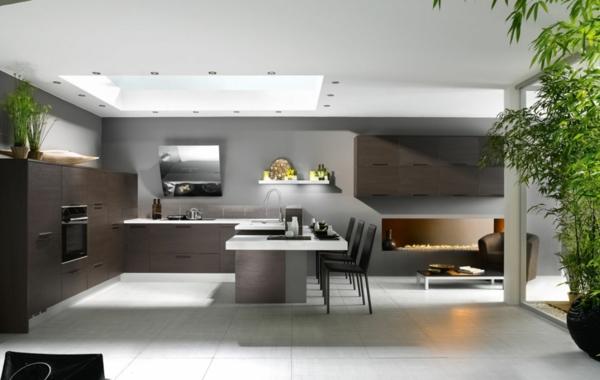 zimmerpflanzen küche dekorieren offener wohnplan
