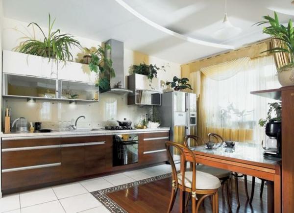 zimmerpflanzen küche esstisch bodenfliesen