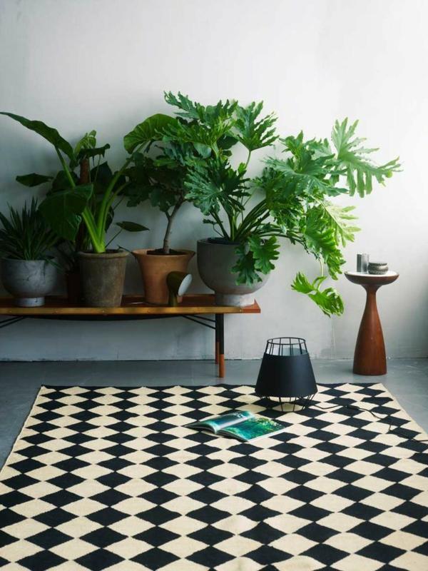 zimmerpflanzen nebeneinander ordnen toller teppich beistelltisch