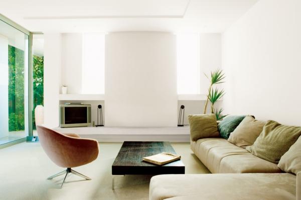 zimmerpflanzen wohnzimmer elegante dekokissen sessel
