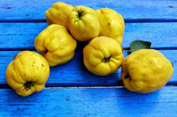 apfel inhaltsstoffe frisch gepflückte quitten