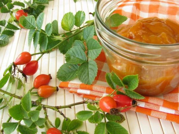 apfel inhaltsstoffe hagebutten marmelade pektin