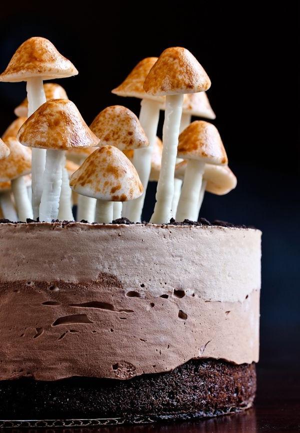 ausgefallene torten pilze essen leckereien