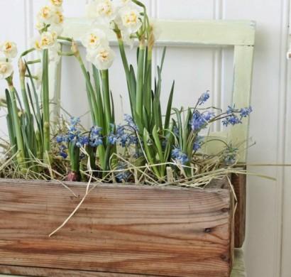 fr hlingsblumen balkon den balkon durch fr hlingsblumen aufpeppen. Black Bedroom Furniture Sets. Home Design Ideas