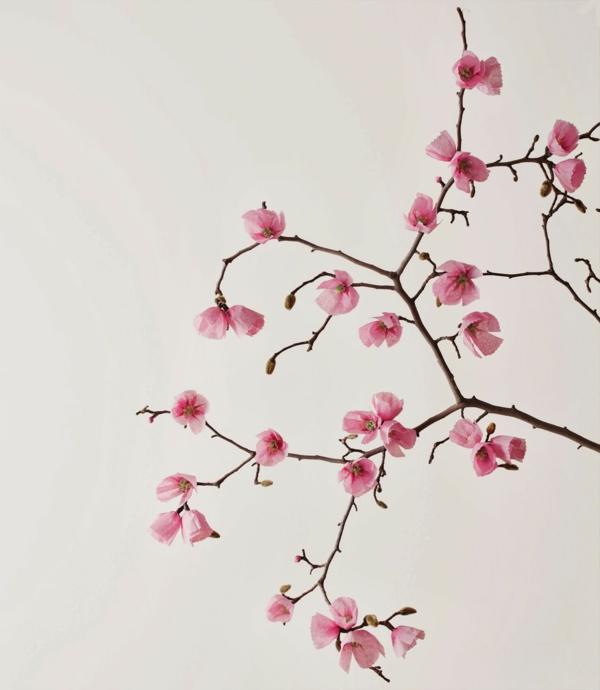 blumendeko papier zarte frühlingsblüten