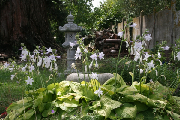 Feng Shui Garden - create your own place of silence
