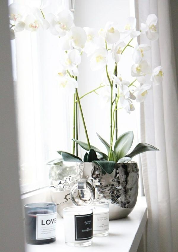 fensterbank deko weiß silber pflanzen