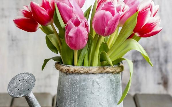 frühlingsblumen rote tulpen pflanzgefäß balkon
