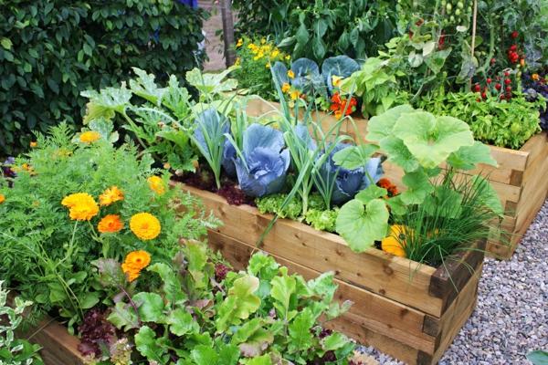 gemüse garten gestalten gartenbau gartengestaltung