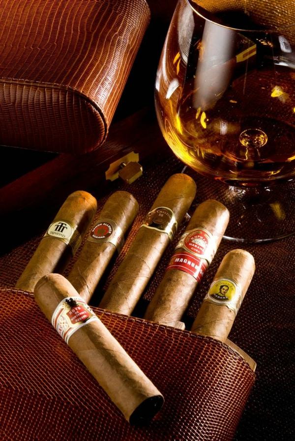 genetischer code reichtum luxuswaren zigarren