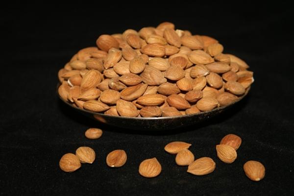 gesundes herz aprikosen nüsse essen