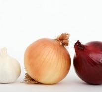 Gesundes Herz – Die passende Nahrung wird es Ihnen sichern!