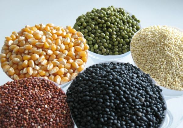 glutenfreies getreide getreidesorten gesund lecker