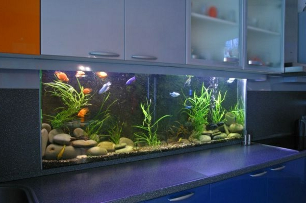 küchendesign küchenrückwand gestalten aquarium
