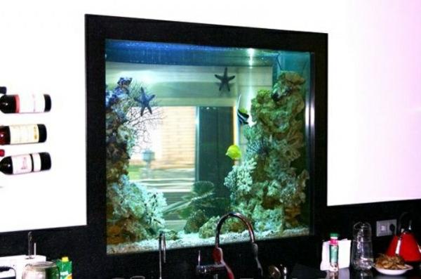 küchengestaltung aquarium integrieren dekoideen küche