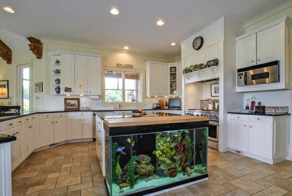 küchengestaltung dekoideen aquarium weiße küchenschränke