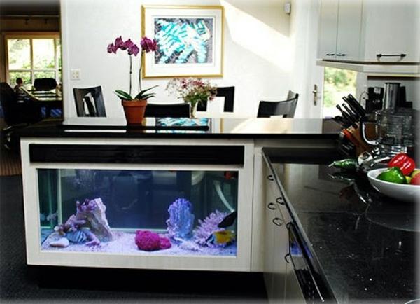 küchengestaltung ideen aquarium kücheninsel integrieren