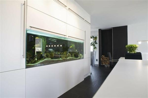 küchengestaltung weiß dekoideen aquarium pflanzen