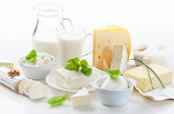 leckeres gesundes essen milchprodukte