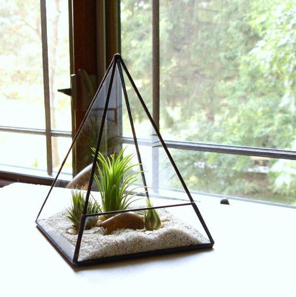 passende terrarium pflanzen glas gefäß pyramide steinchen