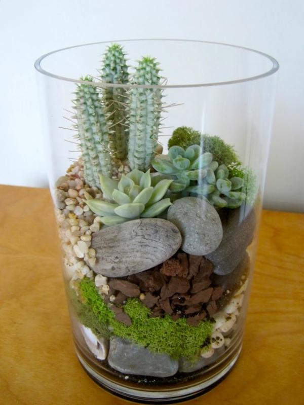 passende terrarium pflanzen glas gefäße steinchen moos
