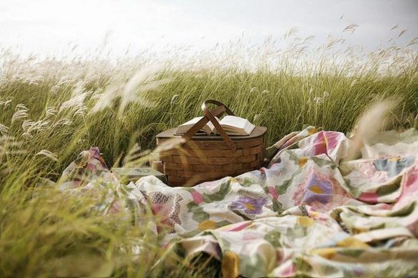 picknick decke frisches muster gras natur
