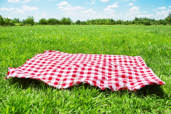 Die Picknickdecke Frische Muster F 252 R Fr 246 Hliche Zeit Im