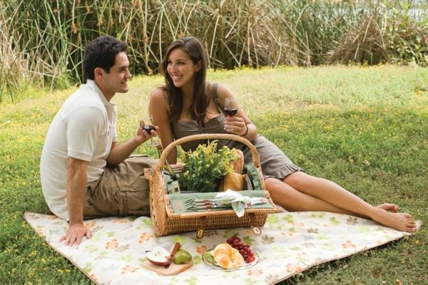 picknick freizeit genießen wein romantisch