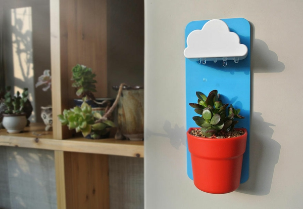 rainy pot zimmerpflanzen pflegen blumentopf hängend wolken