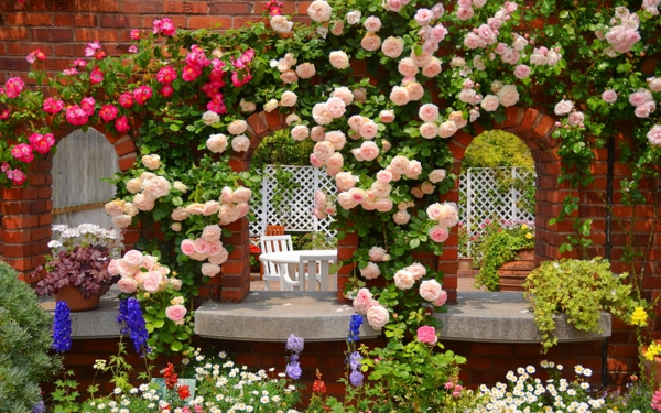 rosen arten arkaden wanddekoration