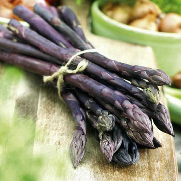 spargel gesund essen spargel arten violetter spargel