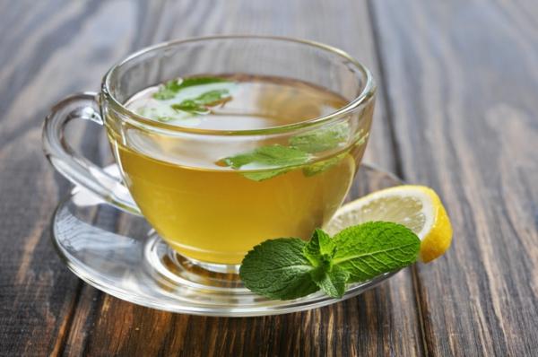 tee zubereiten grüne minze gesund