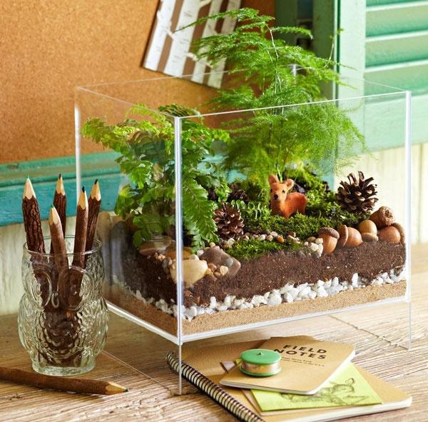 terrarium pflanzen glas gefäss rechteckig schreibtisch dekorieren