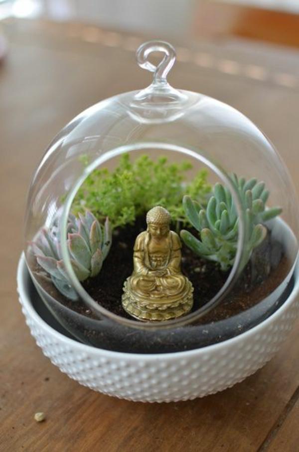 terrarium pflanzen glas gefässe rund buddha statue