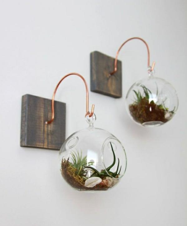 terrarium pflanzen glas gefässe rund hängend wanddeko ideen